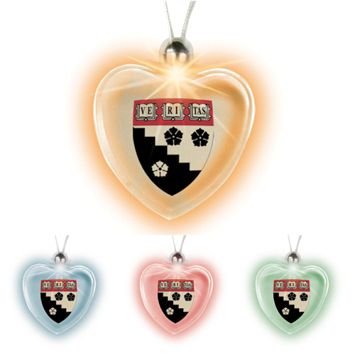 Promotional Heart Lighted Charm Necklace