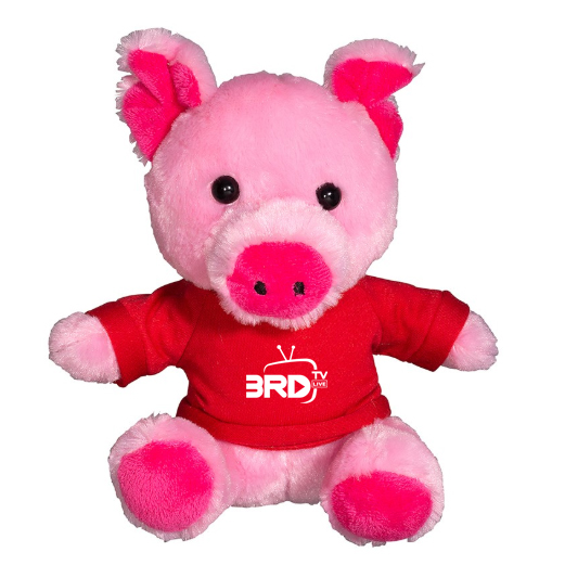 Plush Pig with T-Shirt