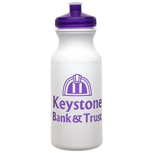 20 oz Economy Bottle with Push-Pull Lid Purple